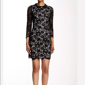 Ted Baker Black Ameera Floral Lace Collared Dress